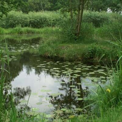 ecologische monitoring van natuurdoelen