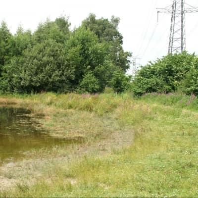 ecologisch stadspark - Ecopark Acht poel