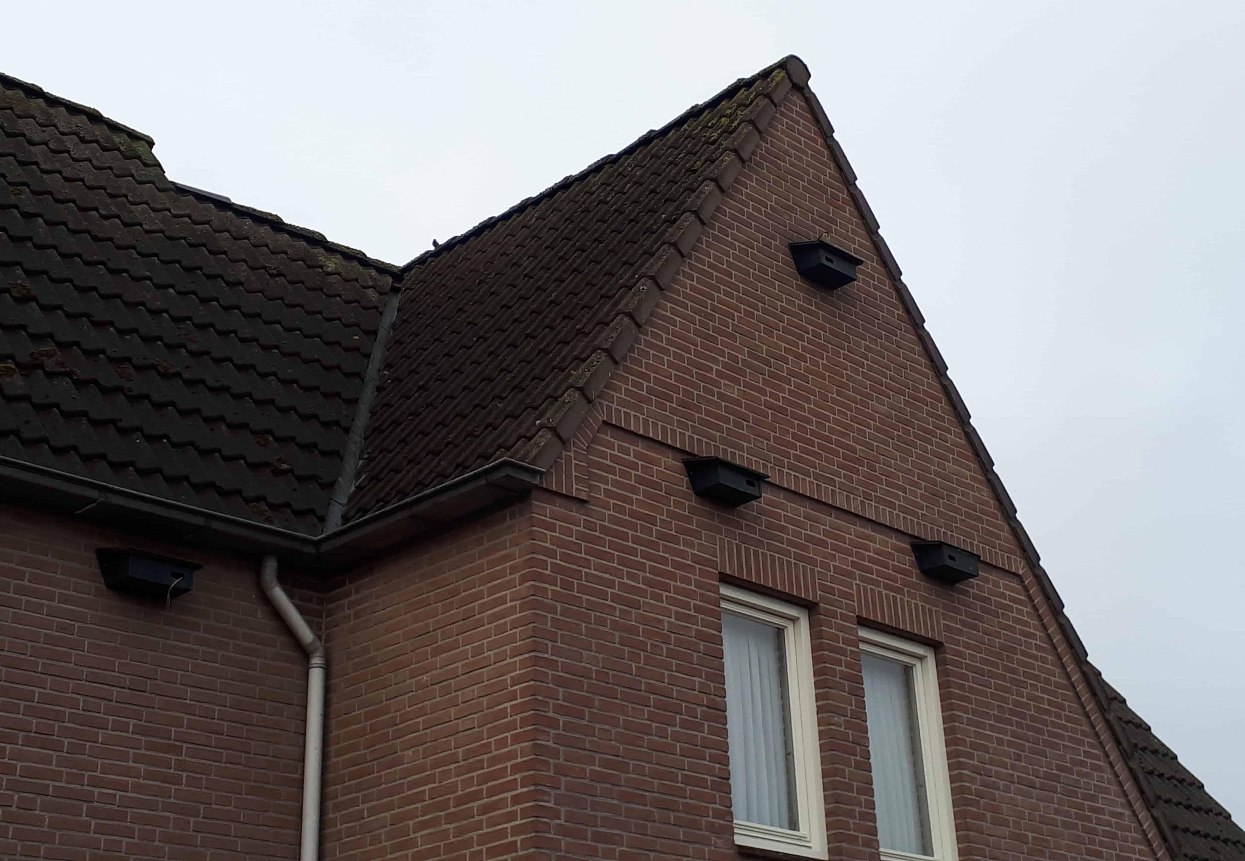 Gierzwaluwkasten beschermde soorten renovatie en sloop natuurinclusief bouwen