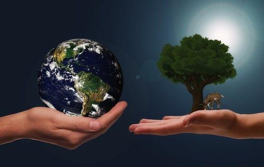 De natuur en de aarde beschermen. Natuur herstellen