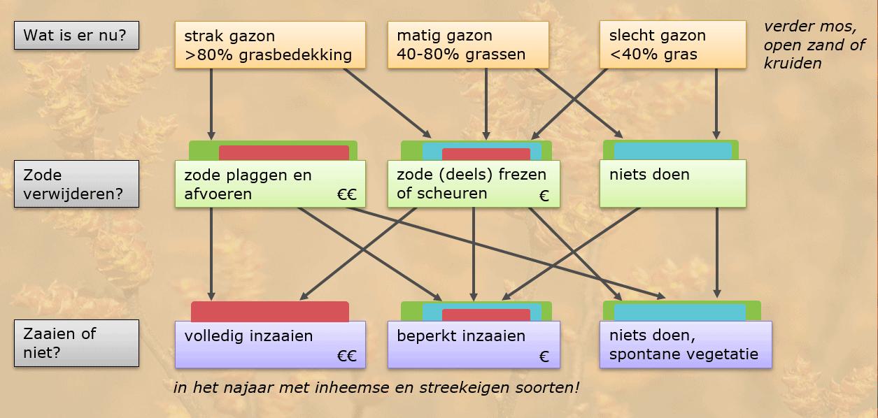 Schema omvorming gazon